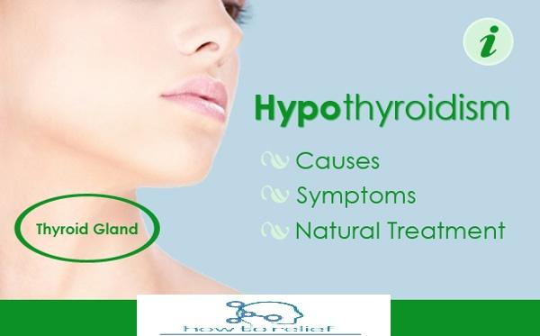 thyroid glan