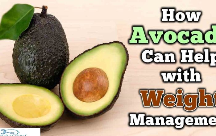 avocado-weight-loss