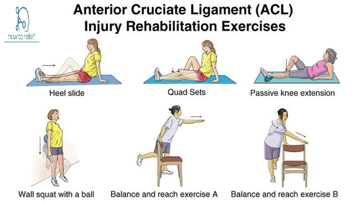 ACL Injuries exercises
